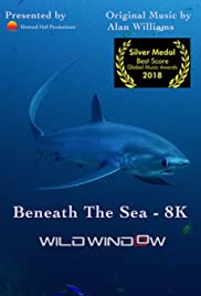 Wild Window: Beneath the Sea Poster