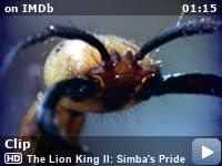deception lion king