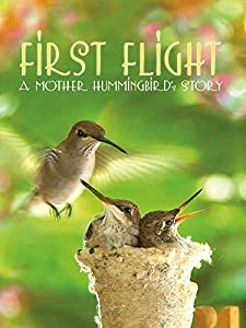 Top 10 sites for free movie downloads First Flight: A Mother Hummingbird's Story [4K2160p]