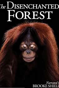 The Disenchanted Forest (2002)