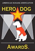 2014 Hero Dog Awards