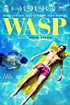 Lgbt film 'Wasp' denied entry to Beirut film festival