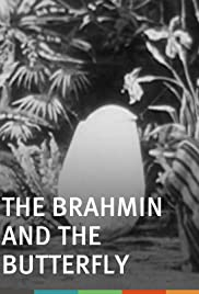The Brahmin and the Butterfly Poster