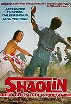 The Shaolin Avengers