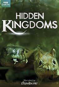 Hidden Kingdoms (2014) Poster - TV Show Forum, Cast, Reviews