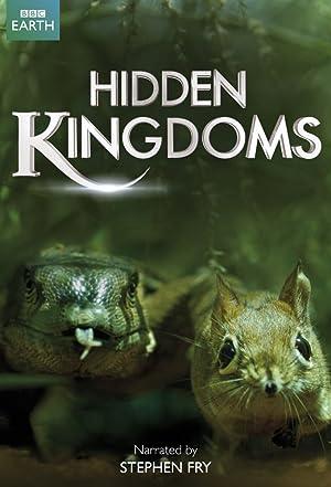 Where to stream Hidden Kingdoms