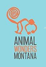 Animal Wonders Montana