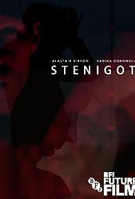 Primary photo for Stenigot