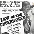 Walter Abel, Richard Bond, Eduardo Ciannelli, Chester Morris, Anne Shirley, and Frank M. Thomas in Law of the Underworld (1938)