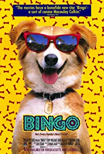Hollywood movies hd free download Bingo by George Miller [480i]