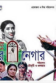 Meher Nigar Poster