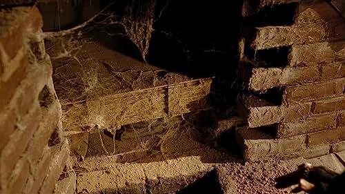 """The Sorcerer's Apprentice: """"Arcana Scene"""""""