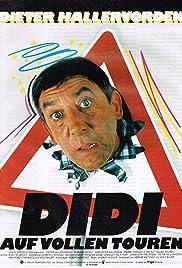 Didi Drives Me Crazy Poster