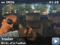 Birds Of A Feather 2012 Imdb