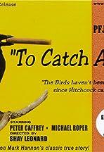 To Catch a Crow