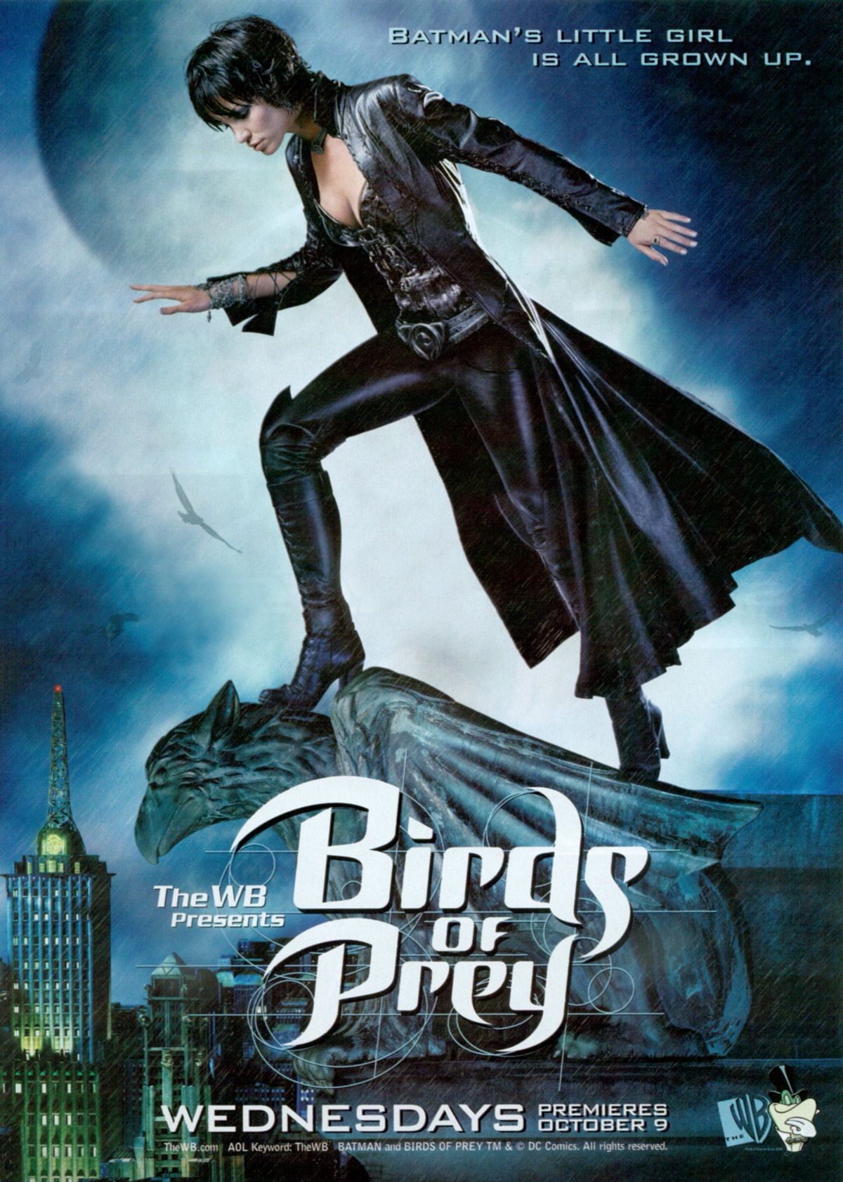 Birds Of Prey Tv Series 2002 2003 Imdb
