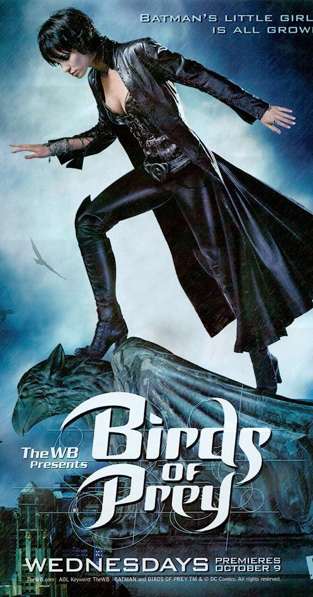 Birds Of Prey Tv Series 2002 2003 Imdb