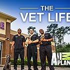 The Vet Life (2016)