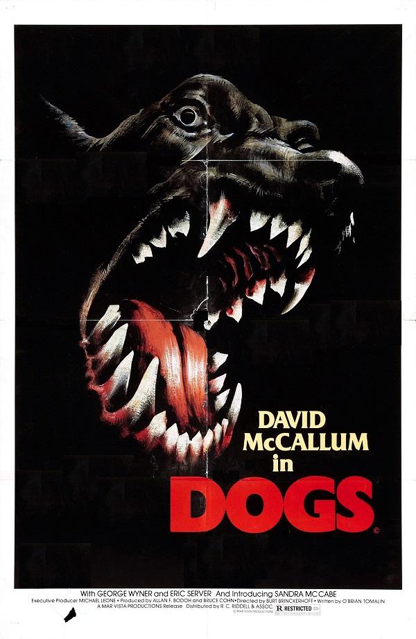 Cães Assassinos [Dub] – IMDB 4.8