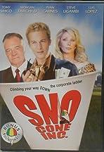 The Sno Cone Stand Inc