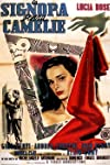 The Lady Without Camelias (1953)