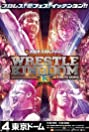 NJPW Wrestle Kingdom 13 (2019) Poster