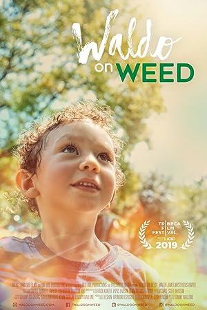 Where to stream Waldo on Weed