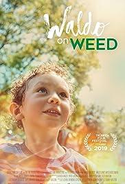Waldo on Weed Poster