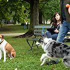 Allison Tolman, Drake the Dog, and Ned the Dog in Downward Dog (2017)