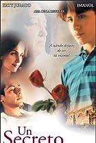 A Beautiful Secret (2002) Poster