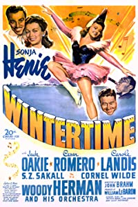 English movies website watch online Wintertime USA [480x640]