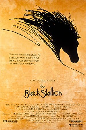 The Black Stallion Poster Image