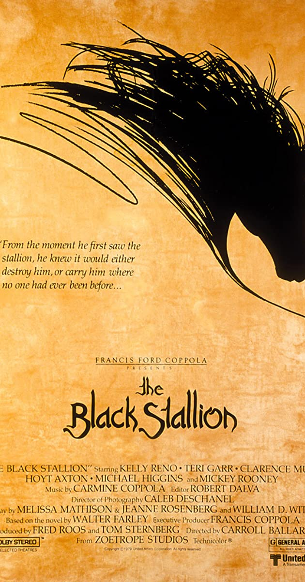 Subtitle of The Black Stallion
