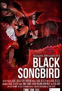 Primary photo for Black Songbird