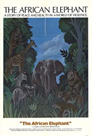 The African Elephant Poster