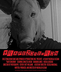 Trapezohedron by none