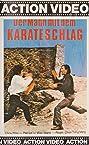 Killer in the Dark (1973) Poster