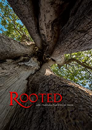 Where to stream Rooted