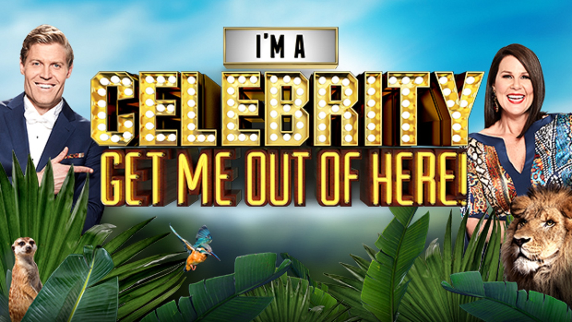 I M A Celebrity Get Me Out Of Here Tv Series 2015 Imdb