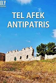Tel Afek: Antipatris Poster