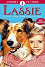 Lassie: A New Beginning (1978) Poster