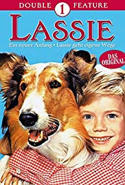 Lassie: A New Beginning Poster