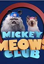 Mickey Meows Club