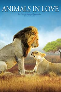 Watch all the latest movies Les animaux amoureux by [DVDRip]