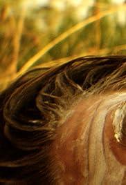 Placebo () film en francais gratuit
