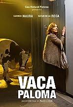 Vaca Paloma