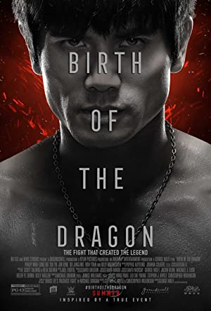 Download Birth of the Dragon (2016) Dual Audio [Hindi DD5.1 + Englsih] BluRay 720p {850MB}