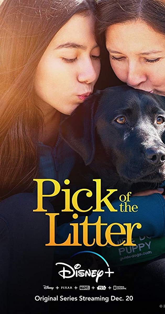 Download Pick of the Litter or watch streaming online complete episodes of  Season 1 in HD 720p 1080p using torrent