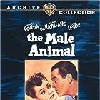 Olivia de Havilland and Henry Fonda in The Male Animal (1942)