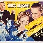 Bela Lugosi, Vince Barnett, Wanda McKay, Tom Neal, and Dave O'Brien in Bowery at Midnight (1942)